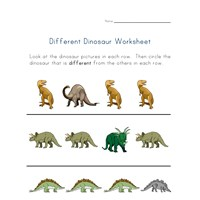 different dinosaurs worksheet