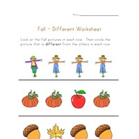 fall different worksheet