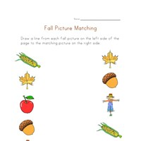fall picture match