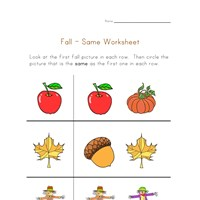 fall same worksheet