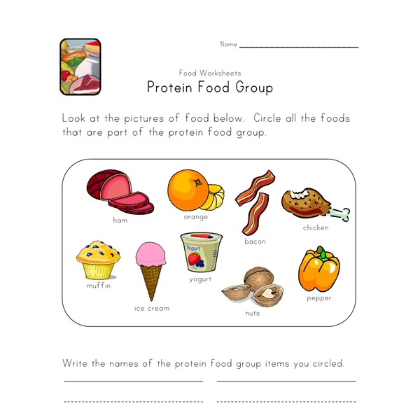 Dairy Food Images for Kids  Nourish Interactive