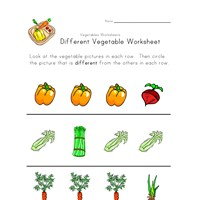 vegetable different worksheet