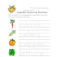 Vegetable Worksheets All Kids Network