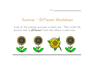 summer different worksheet