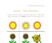 summer same worksheet