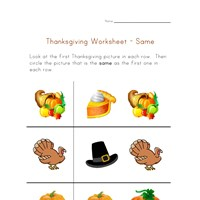 thanksgiving worksheet same