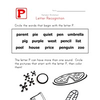 Words that start with the letter P