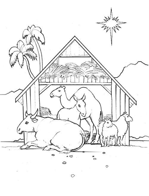 view stable animals