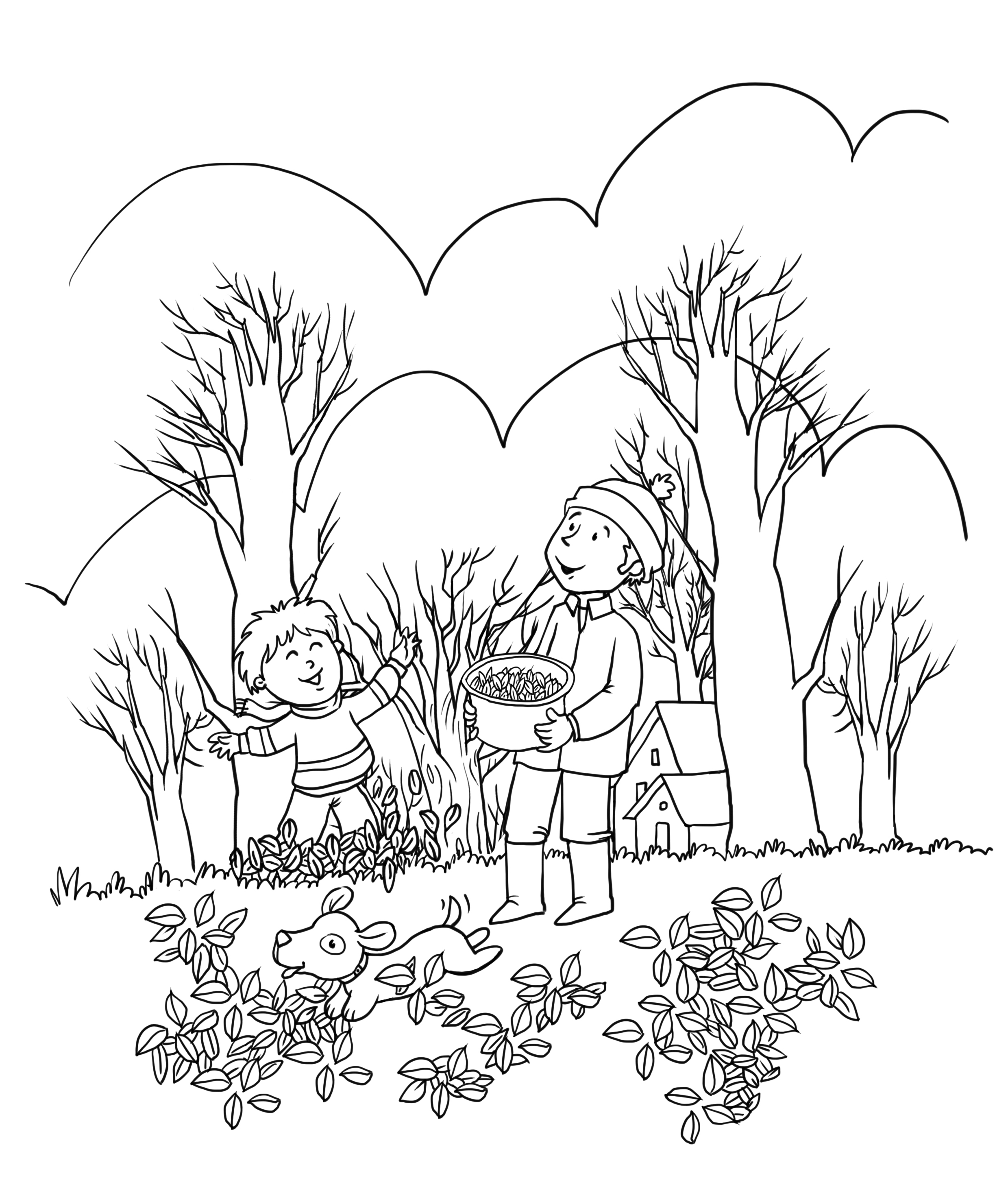 Colouring pictures of autumn season fall leaf leaves for for Coloring pages autumn season