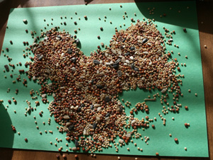toddler bird craft