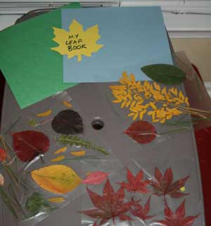 fall leaf book craft