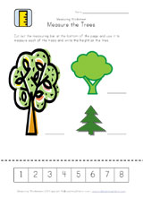 measuring trees worksheet