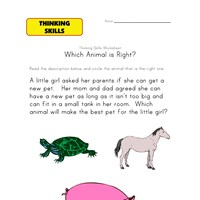 thinking skill worksheet animals