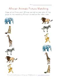 printable africa animals picture matching
