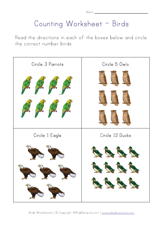 birds counting worksheet