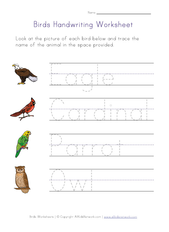 birds handwriting worksheet