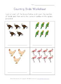 counting worksheet - birds