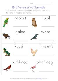 birds worksheet - word scramble