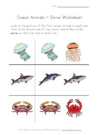 ocean life worksheet - same