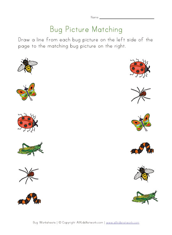 bugs picture matching worksheet