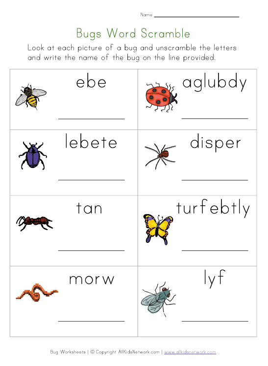 bug names scramble worksheet