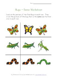 bugs worksheet - same
