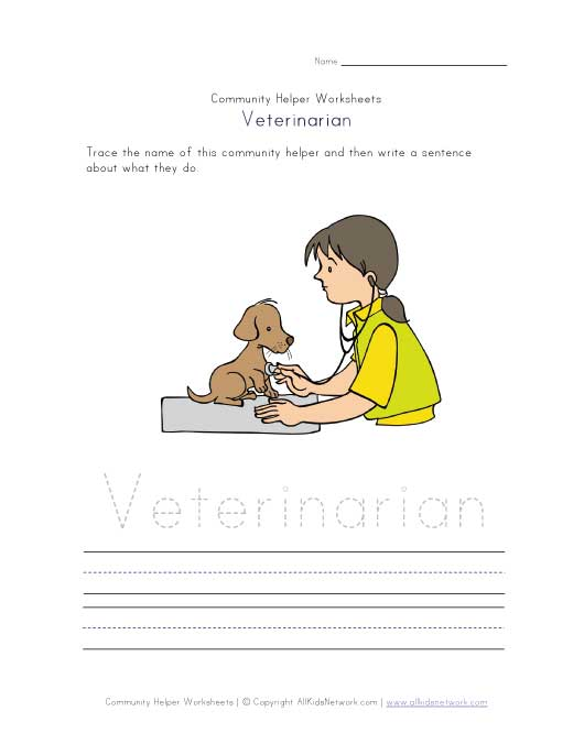 what a veterinarian does worksheet