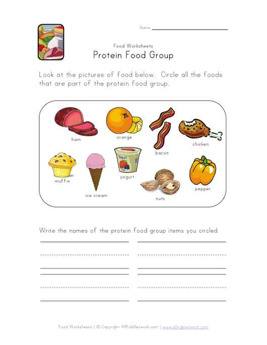 protein food group worksheet