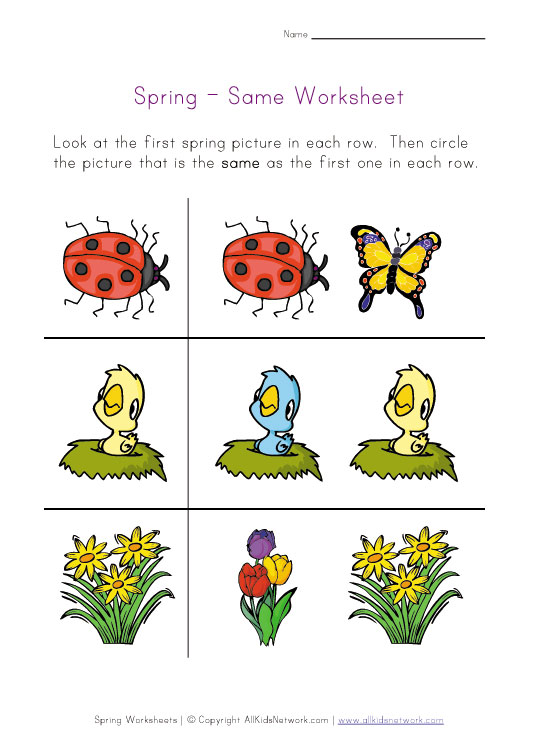 spring same worksheet