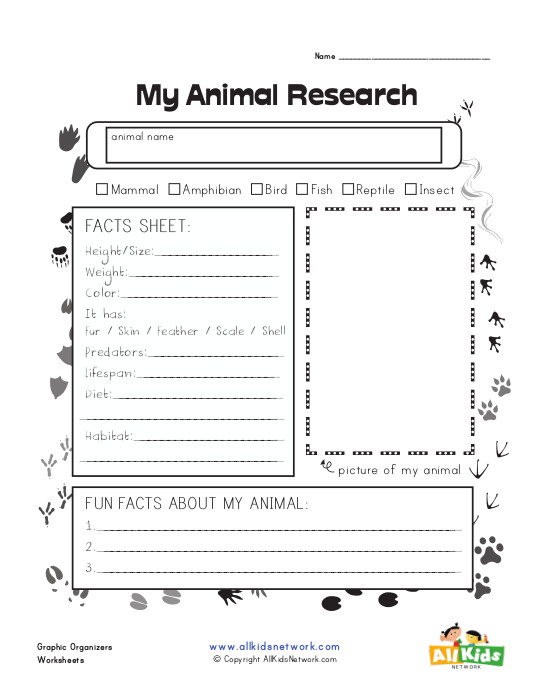 Animal Research Graphic Organizer : All Kids Network